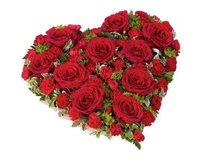 Red Rose & Carnation Heart