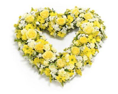 Yellow & White Open Heart